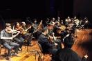 02 Από τη συναυλία της Ορχήστρας Παραδοσιακών Οργάνων της ''Φιλαρμονικής'' στο Συνεδριακό (25-11-2017)